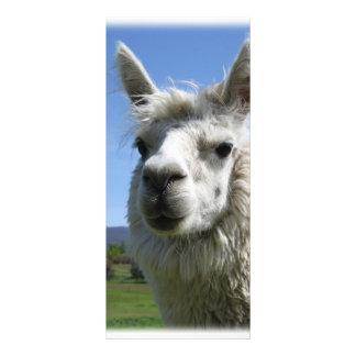 Alpaca de Alicia Tarjeta Publicitaria Personalizada