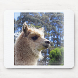 Alpaca de Emily Tapetes De Ratones