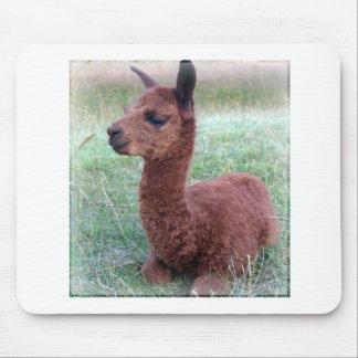 Alpaca de Hannah del bebé Mouse Pad