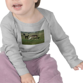 Alpaca de plata y su cria camiseta