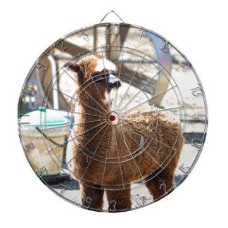 Alpaca del bebé - pacos del Vicugna Tabla Dardos