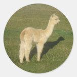 Alpaca del cervatillo pegatina redonda