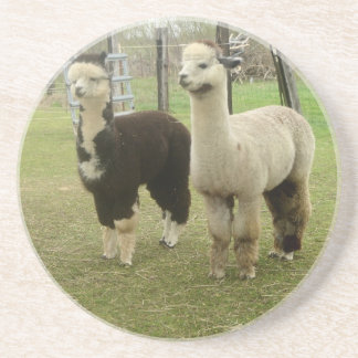 Alpaca Duo Coasters