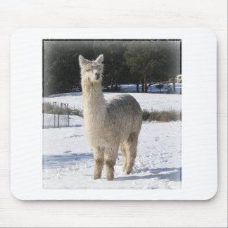 Alpaca en la nieve mouse pad