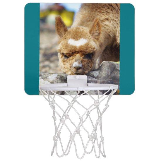 Alpaca Goal Mini Basketball Hoop