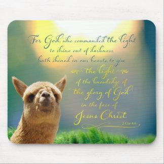 Alpaca Gold Teal Bible Quote Mousepad