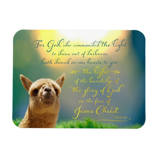 Alpaca Gold Teal Bible Verse Photo Magnet