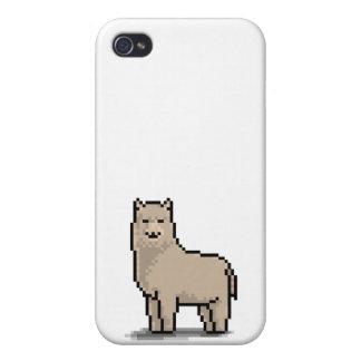 Alpaca Grace iPhone 4 Case