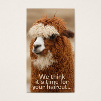 Alpaca hairstylist appointment cards
