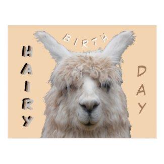 Alpaca Hairy Birthday Postcard