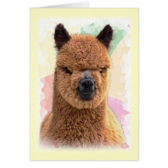 Alpaca Happy Birthday Card