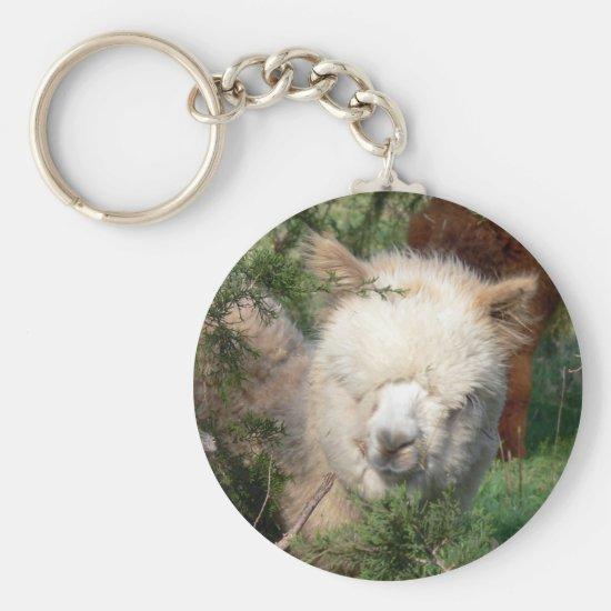 Alpaca in Cedar Keychain