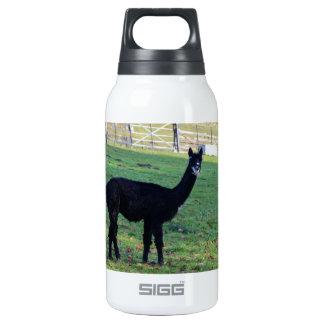 Alpaca Insulated Water Bottle