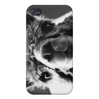 Alpaca iPhone 4/4S Cover