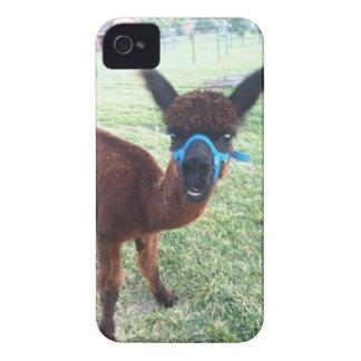 Alpaca iPhone 4 Case-Mate Cases
