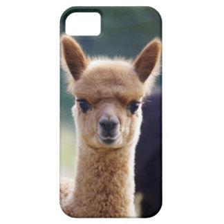 Alpaca iPhone 5 Cases