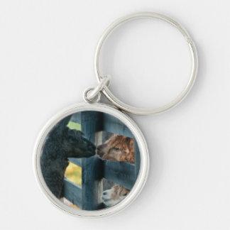 Alpaca Kissing Key Chain