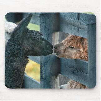 Alpaca Kissing Mouse Pad