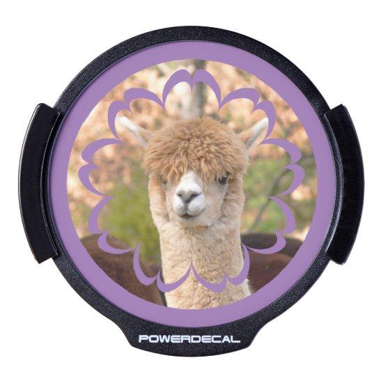 Alpaca LED Window Decal Belle