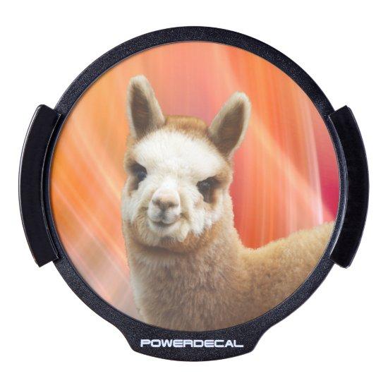 Alpaca LED Window Decal Rossi