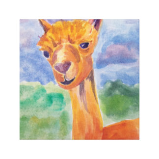 Alpaca Love Canvas Prints