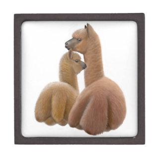 Alpaca Love Premium Gift Box