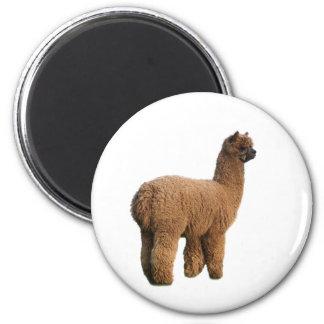 Alpaca Magic Magnet