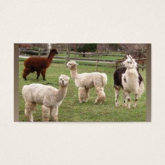 Alpaca Melange ~ biz card