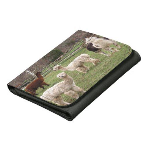 Alpaca Melange ~ wallet