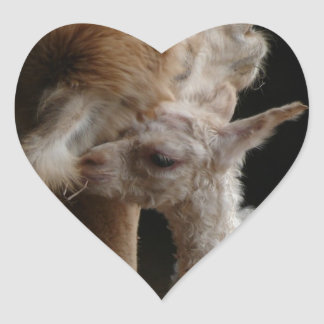 Alpaca Mother and Cria - The Moment of first love Heart Sticker