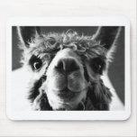Alpaca Mouse Pad