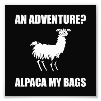 Alpaca My Bags Photo Print
