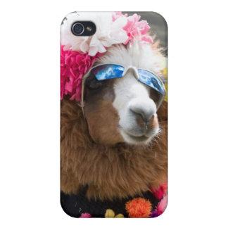 Alpaca, Pachacoto, Cordillera Blanca, Ancash iPhone 4 Case
