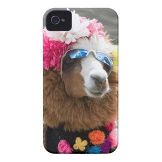 Alpaca, Pachacoto, Cordillera Blanca, Ancash iPhone 4 Case-Mate Cases