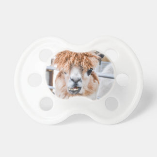 Alpaca Pacifier