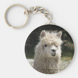 Alpaca, Parque Llaviucu, Ecuador Llaveros Personalizados