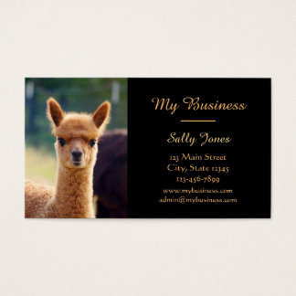 Alpaca Pet Care Business Cards Double-Sided