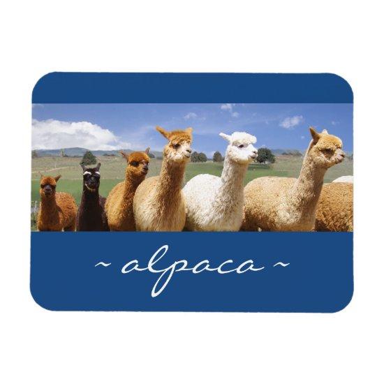 Alpaca Photo Magnet