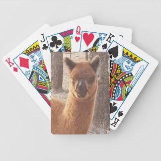 Alpaca Playing Cards
