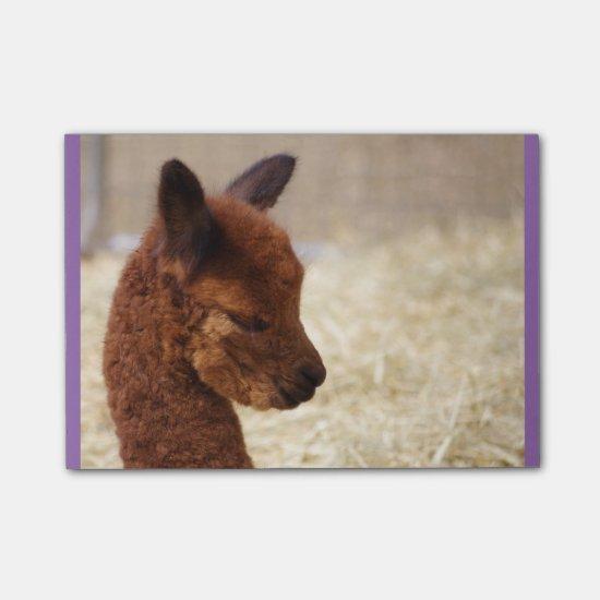 Alpaca Post-it® Notes