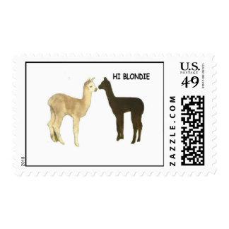"""Alpaca postage """"Hi Blondie"""""""