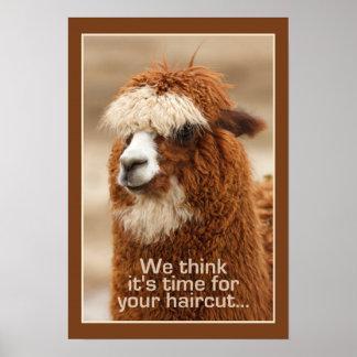 Alpaca poster