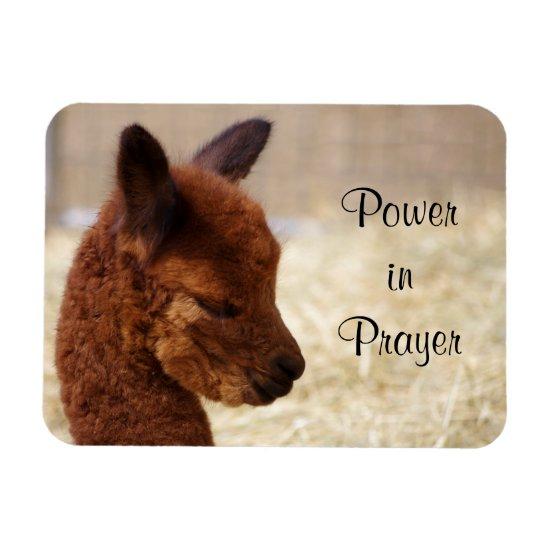 Alpaca Prayer Magnet