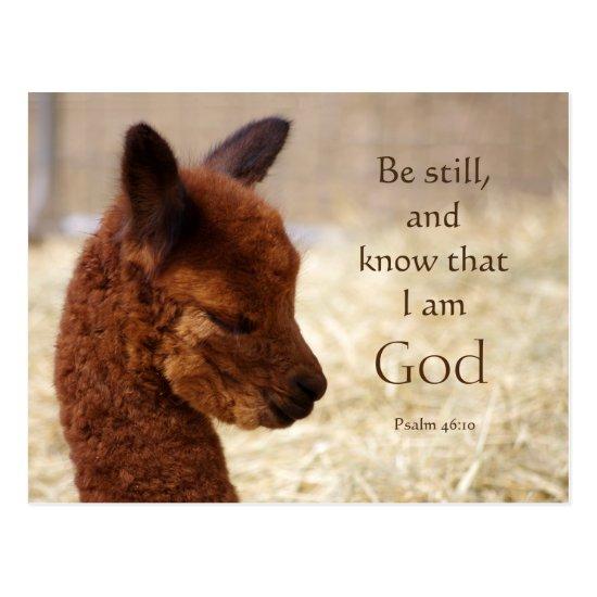 Alpaca Psalm 46:10 Postcard