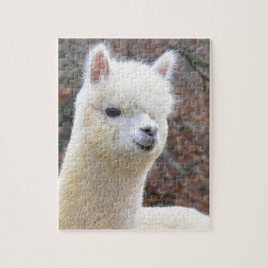 Alpaca Puzzle Analise