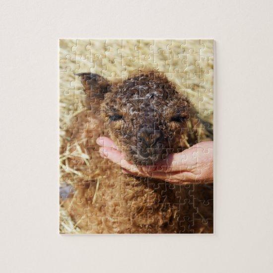 Alpaca Puzzle Newborn