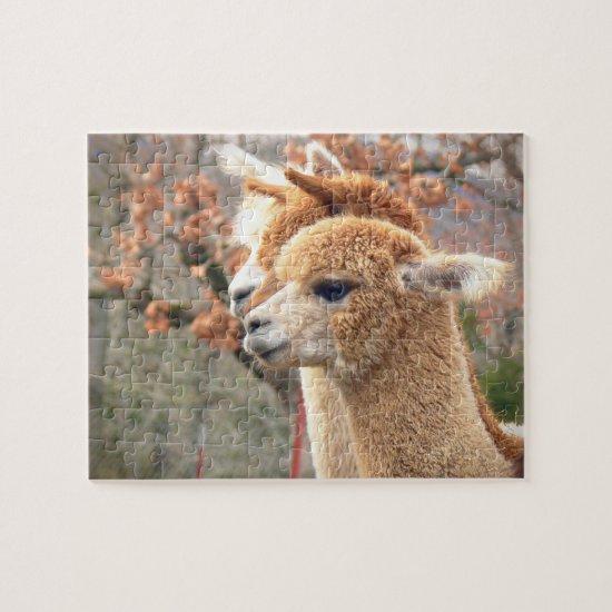 Alpaca Puzzle Sarah