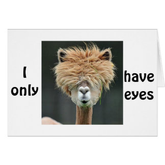 """ALPACA SAYS """"I ONLY HAVE EYES FOR YOU"""" CARD"""
