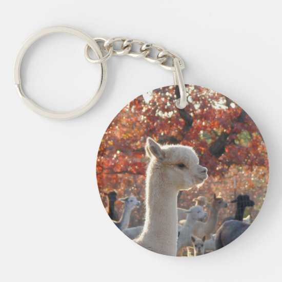 Alpaca Scripture Acrylic Keychain