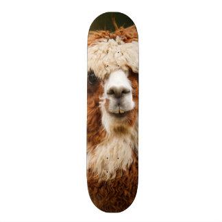 Alpaca Skateboard Decks